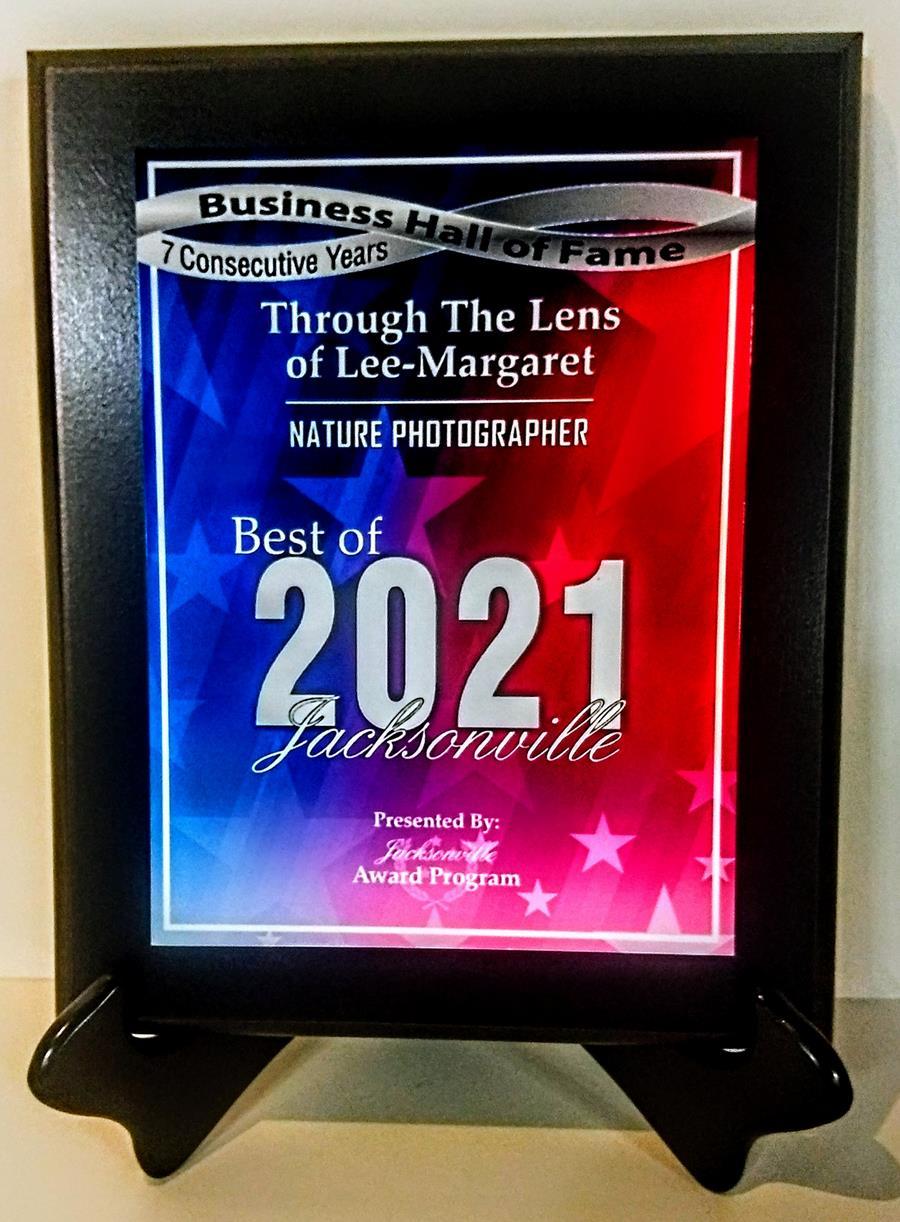 2021 Best of Jacksonville Award