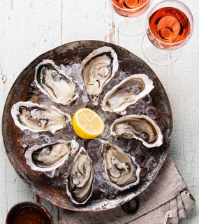 Bluff Oyster Season