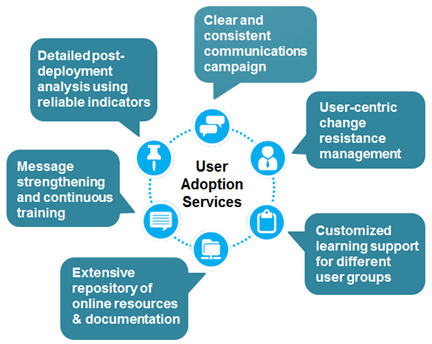 Primary Features of our User Adoption Services